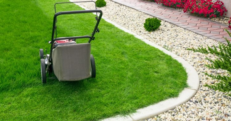 Lawn Care Trends For 2019