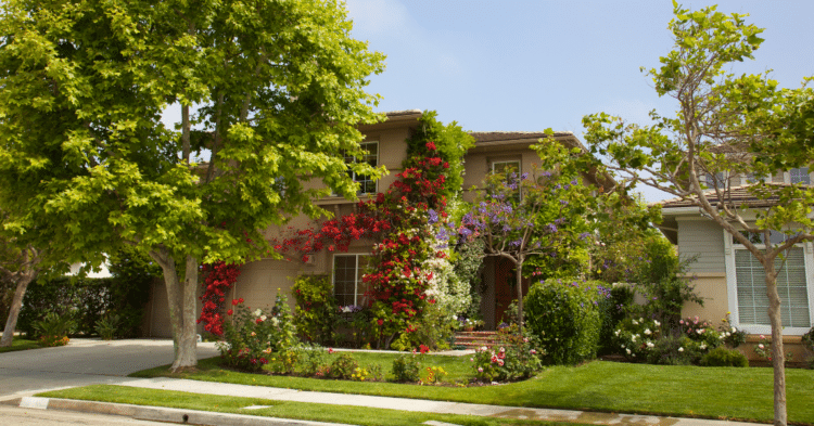 Why Landscaping is Essential