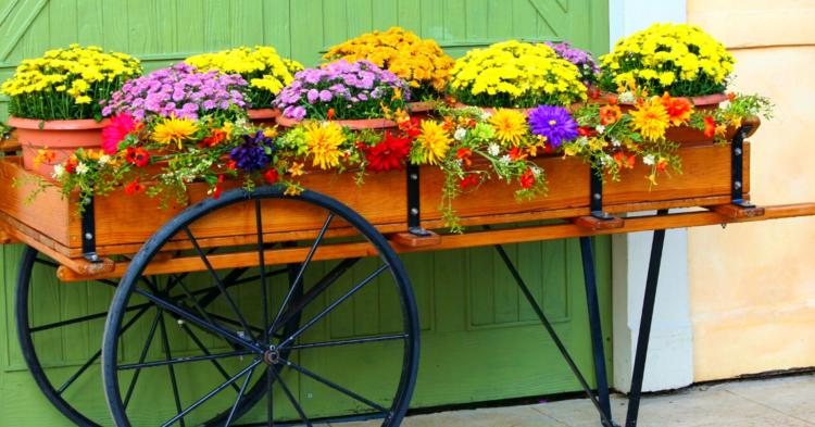 Flower Bed Design Ideas